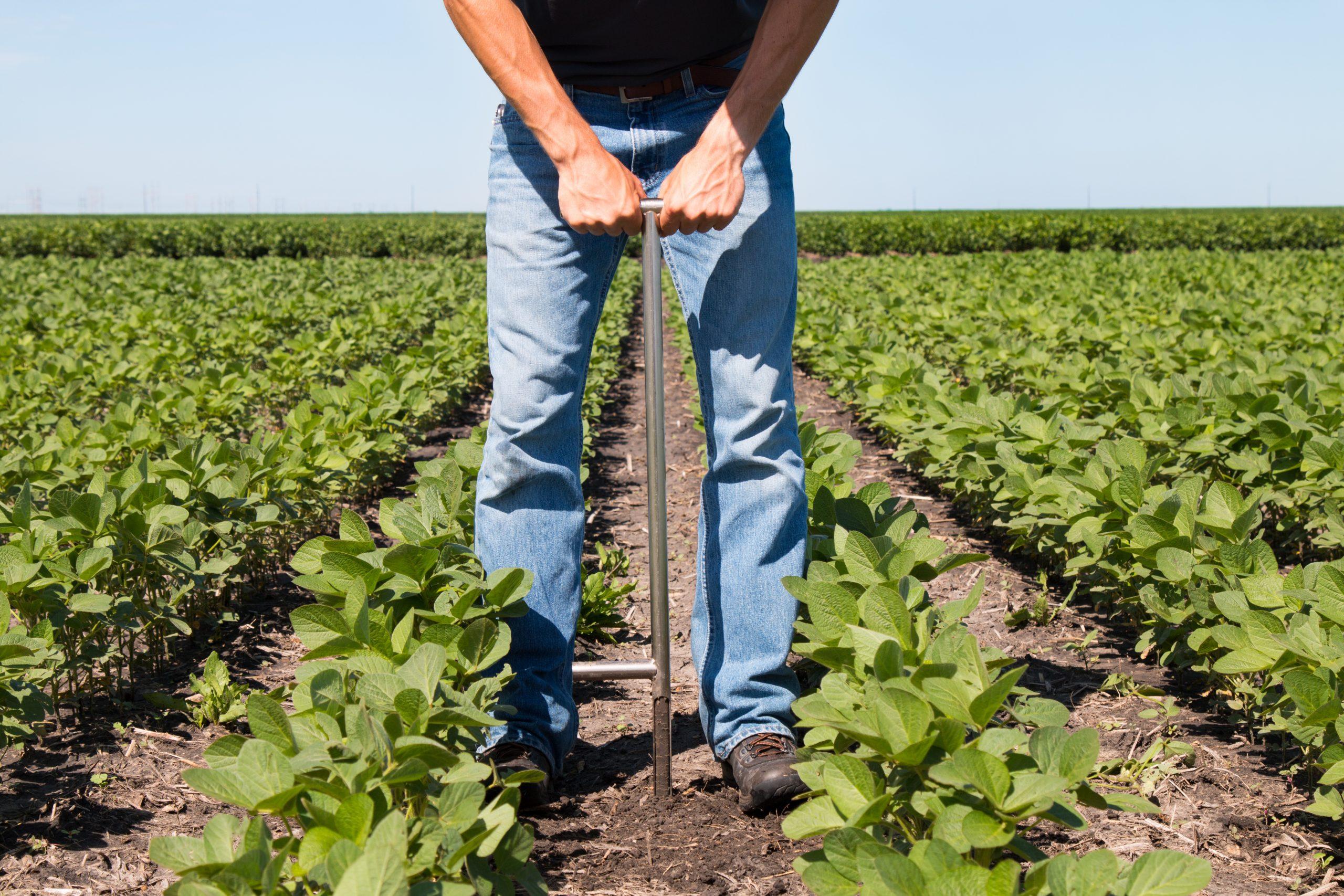Soil Health, Regenerative Agriculture